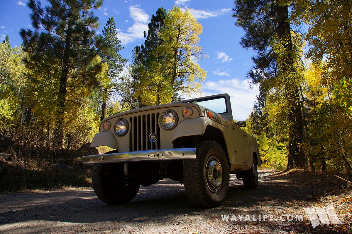 WAYALIFE : EMMA - Jeep C101 Jeepster Commando
