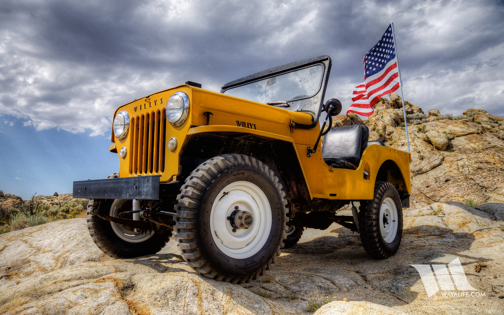 WAYALIFE : PAPPY - 1954 Willys CJ3B